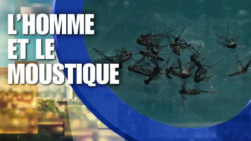 13h15, les Français du dimanche 25 juin 2017