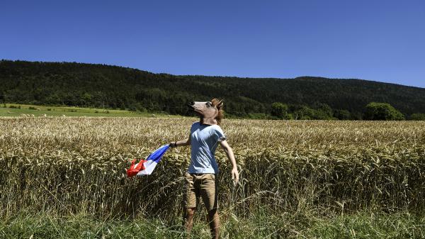Le Tour de France avantage-t-il le sud du pays ? Découvrez combien de fois la Grande Boucle est passée près de chez vous depuis sa création
