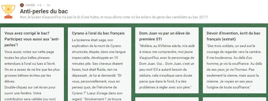 """La professeure de lettre Françoise Cahen a lancé une plateforme sur Internet pour recenser les \""""pépites\"""" du bac, mercredi 5 juillet 2017."""
