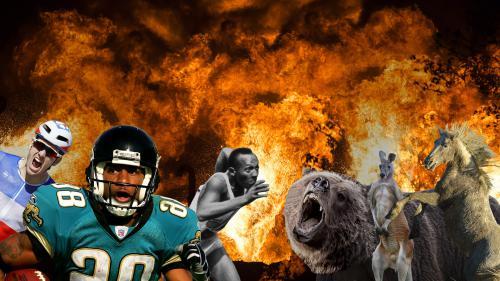 VIDEO. Boxeur contre ours, coureur contre autruche... Quand des sportifs affrontent des animaux