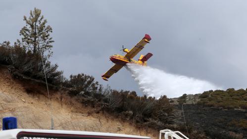 DIRECT. Vaucluse : 400 hectares de forêt touchés par un incendie dans le massif du Luberon, l'autoroute A51 coupée