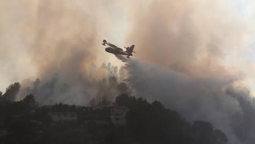 Massif du Luberon, Carros, Olmeta di Tuda... Ce que l'on sait sur les incendies qui ravagent le sud-est de la France