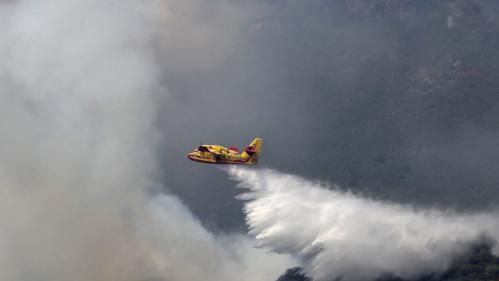 """Polémique sur les Canadair : """"Les avions ne sont pas dans les airs parce qu'on n'en a pas assez"""", déplore le syndicat des pilotes"""