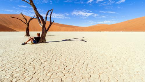 On épuise de plus en plus vite les ressources naturelles de la planète : la preuve enungifanimé