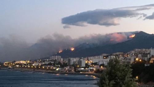 """Incendies en Corse : """"Si les Canadair étaient intervenus le plus tôt possible, on n'en serait pas là"""""""