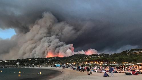 """""""Toute la politique forestière est à revoir en France"""", selon l'association Défense des Forêts contre l'incendie"""