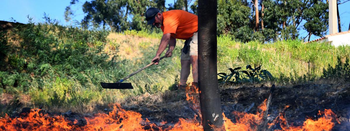 Un homme tente d\'éteindre des flammes de l\'incendie de Bormes-les-Mimosas (Var), le 26 juillet 2017.