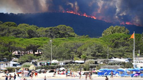 """""""Il y aura de plus en plus d'incendies à cause du changement climatique"""" : le cri d'alerte de deux chercheurs"""