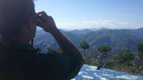 Incendies : du haut de leurs tours, ils guettent les départs de feu dans les Alpes-Maritimes