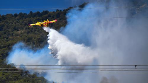 Incendies : l'indispensable travail des pilotes de Canadair