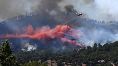 """DIRECT. Incendie à Bormes-les-Mimosas : le feu """"n'a pas progressé"""" pendant la nuit"""