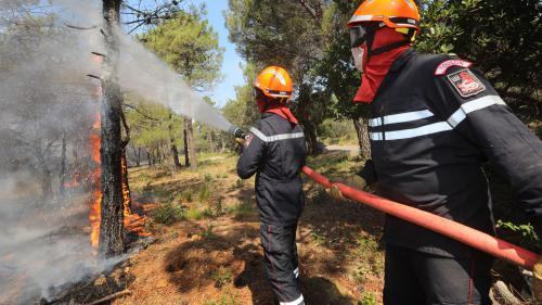 DIRECT. Incendie à Martigues : la garde à vue de deux adolescents prolongée