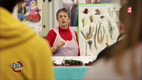 """VIDEO. """"13h15"""". Le cours magistral de Scarlette sur les algues alimentaires..."""