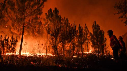 Incendies au Portugal : 141 000 hectares partis en fumée depuis le début de l'année