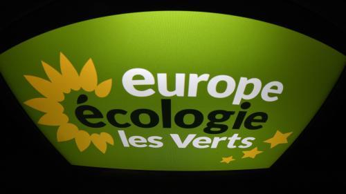 Les comptes d'Europe Écologie - Les Verts sont dans le rouge