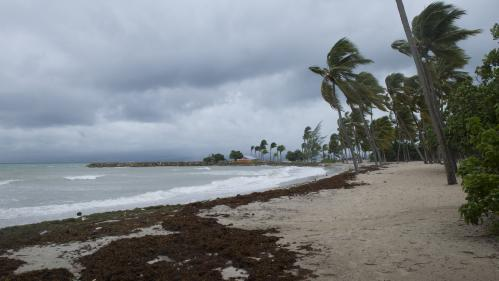 Trois questions sur la tempête tropicale Maria, qui menace les Antilles françaises