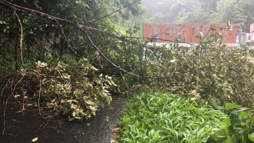 DIRECT. L'ouragan Maria passe en catégorie 3, la Martinique placée en alerte cyclonique violette, le plus haut niveau existant