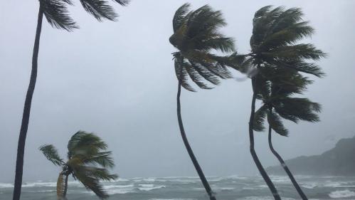 VIDEO. L'ouragan Maria se renforce en approchant des côtes de la Martinique et de la Guadeloupe