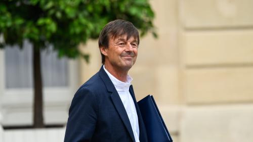 Glyphosate : Nicolas Hulot propose un renouvellement limité à trois ans