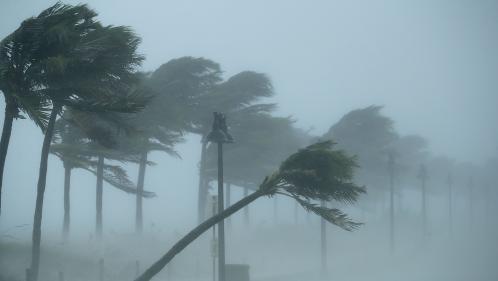 VIDEO. De 70 à 300 km/h, quel est l'impact du vent ?