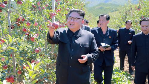 """Pyongyang répond à Donald Trump : """"Le chien aboie, la caravane passe"""""""