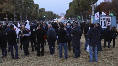 Glyphosate : opération coup de poing des agriculteurs sur les Champs-Élysées