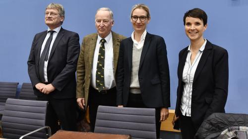 Allemagne : cinq visages pour comprendre l'AfD, le parti d'extrême droite qui fait son entrée au Parlement