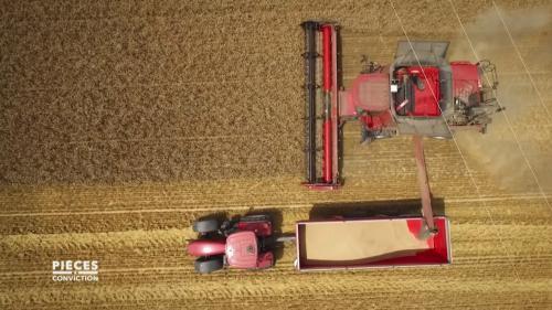 VIDEO. Terres agricoles : du blé ou du béton...