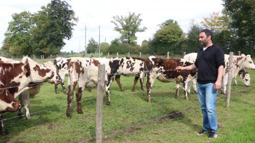"""""""C'est possible autrement"""" : dans l'Orne, des agriculteurs racontent comment ils ont arrêté le glyphosate"""