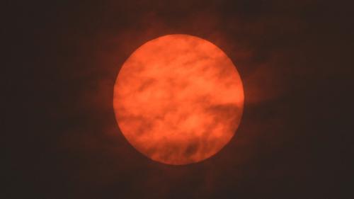 Ciel jaune, soleil rouge, envols d'oiseaux effrayés... Les effets de la tempête Ophelia sur la nature