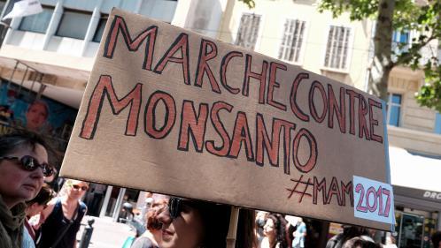 Agent orange, glyphosate... Comment Monsanto coupe l'herbe sous le pied de ses détracteurs