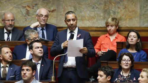 VIDEO. Un député ovationné par l'Assemblée nationale après une question sur les violences faites aux femmes