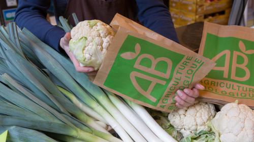VIDEO. De nouvelles règles européennes pour des produits bio au rabais ?