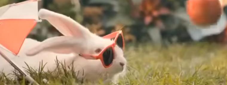 Comment puis-je brancher les oreilles de lapin