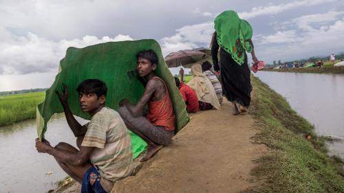 """""""Nous ne devons pas rester spectateurs de ce génocide"""" : des artistes appellent à aider les Rohingyas"""