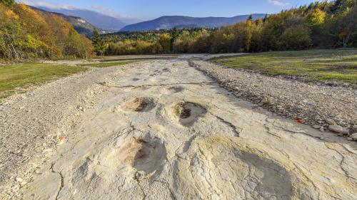 Un dinosaure de près de 40 tonnes a laissé 110 traces de pas dans l'Ain