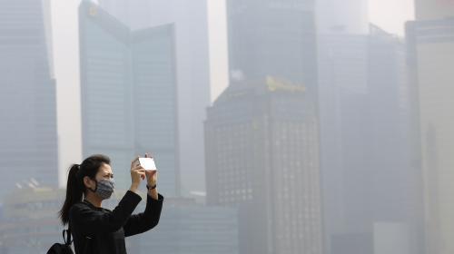 Environnement : trois questions sur l'avertissement lancé par 15 000 chercheurs inquiets de l'état de la planète