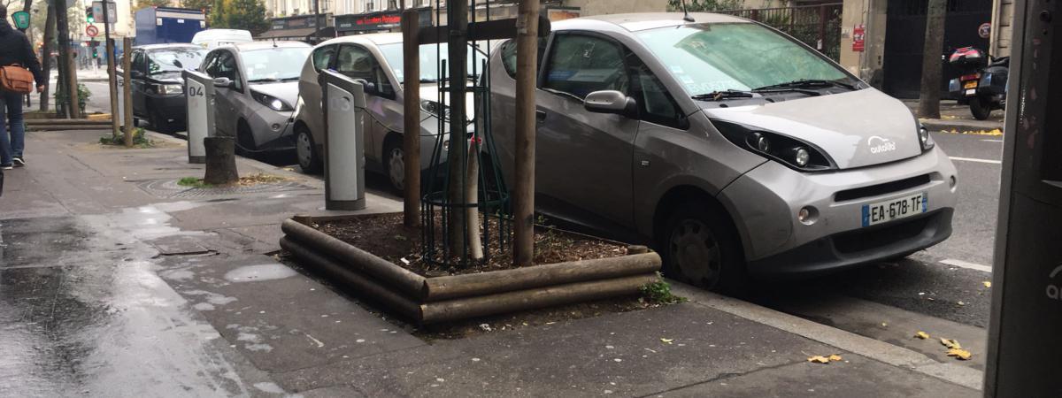 autolib paris des voitures sales squatt es un d potoir qui dissuade des utilisateurs. Black Bedroom Furniture Sets. Home Design Ideas