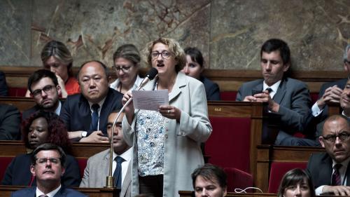 Législatives : le Conseil constitutionnel annule l'élection d'une députée LREM du Val d'Oise