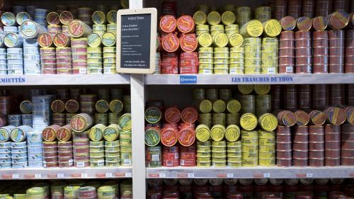 Découvrez le classement de Greenpeace des boîtes de thons les plus respectueuses de l'environnement