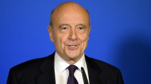 Présidence des Républicains : Alain Juppé annonce qu'il votera pour Maël de Calan, opposé au favori Laurent Wauquiez