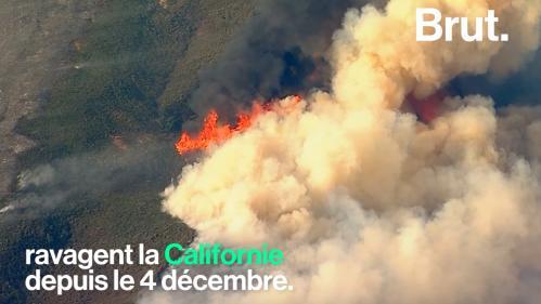 VIDEO. Les gigantesques incendies de Californie visibles depuis l'espace