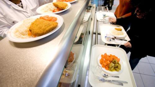 Gaspillage alimentaire : un élu veut mettre la restauration collective à contribution