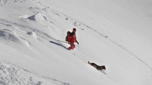 Quatre départements des Pyrénées placés en alerte orange pour des risques d'avalanches