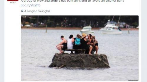 Nouvelle-Zélande : pour contourner l'interdiction de boire de l'alcool, ils se construisent une île