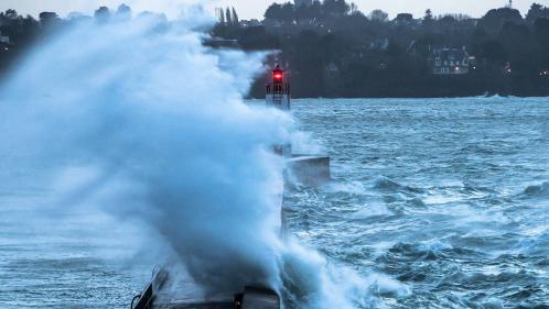 VIDEO. Toitures envolées, électricité coupée, arbres renversés, rues inondées : la tempête Eleanor a balayé la France