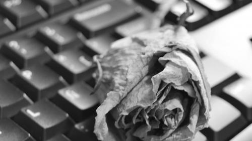 Facebook, Twitter, Google… Comment préparer votre testament numérique