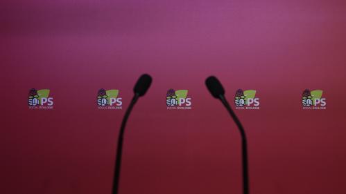 Le Foll, Carvounas... Qui sont les candidats à la tête du PS ?