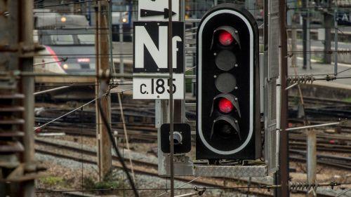 Un train percute deux fois des sangliers sur son trajet entre Paris et Clermont-Ferrand Nouvel Ordre Mondial, Nouvel Ordre Mondial Actualit�, Nouvel Ordre Mondial illuminati