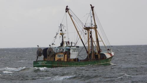 Le Parlement européen vote l'interdiction de la pêche électrique, accusée d'épuiser les ressources des fonds marins